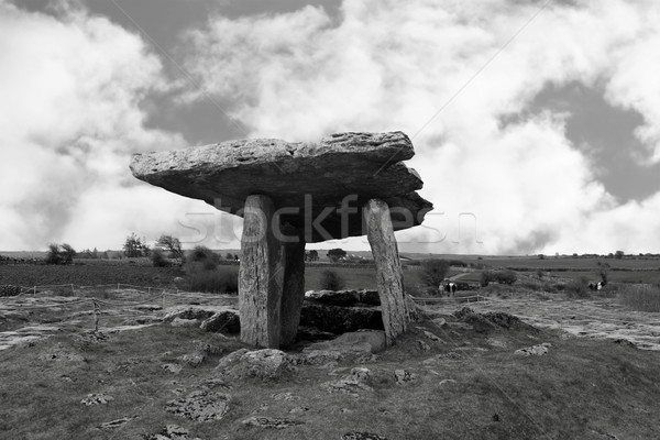 poulnabrone dolmen fenced off with tourists Stock photo © morrbyte