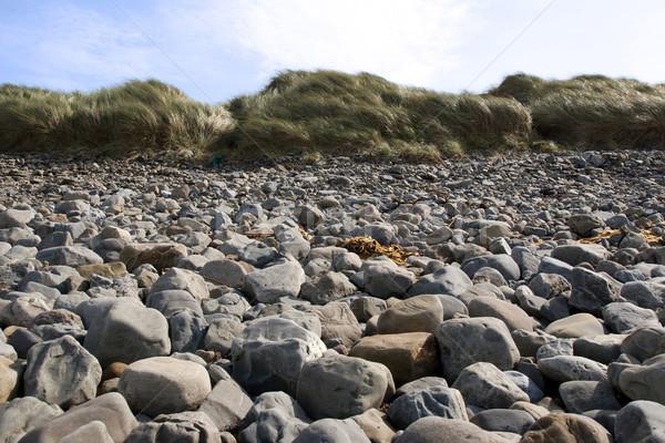 beale rocky beach dunes Stock photo © morrbyte