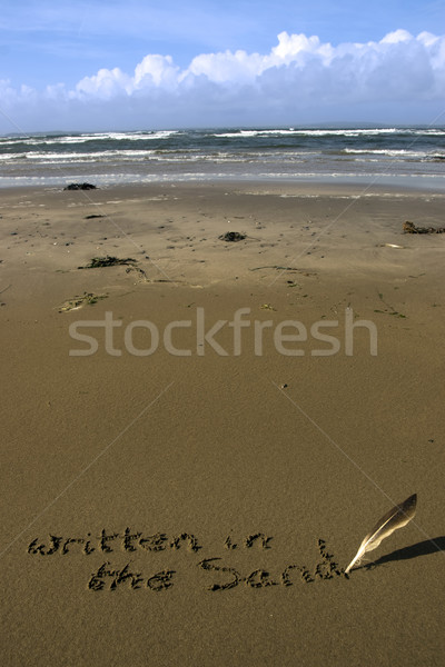 written in the sand on a  beach with feather quill Stock photo © morrbyte