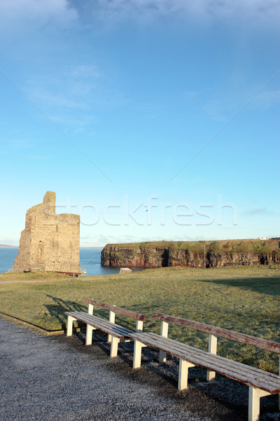 frosty benches and ballybunion castle ruin view Stock photo © morrbyte