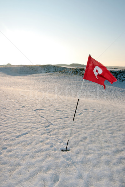 snow covered links golf course breezy red flag  Stock photo © morrbyte