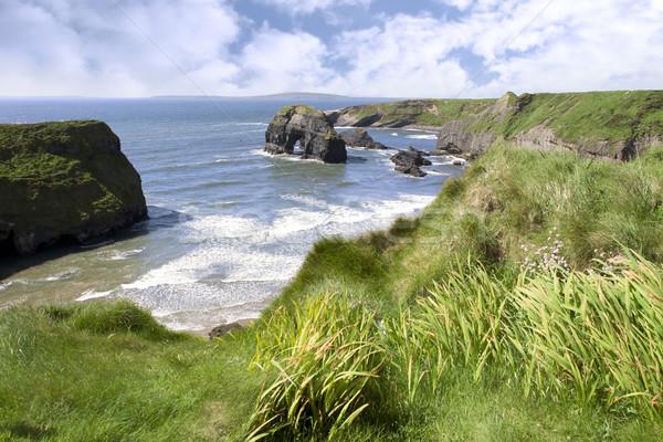 Dziewica rock widoku Irlandia wybrzeża Zdjęcia stock © morrbyte