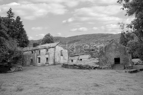 rundown abandoned Irish farmhouse Stock photo © morrbyte