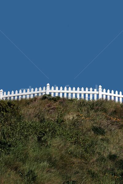 white picket fences Stock photo © morrbyte