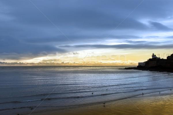Deniz feneri kuşlar plaj mantar İrlanda ev Stok fotoğraf © morrbyte