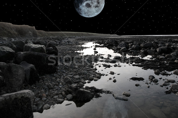 full moon over rocky beach Stock photo © morrbyte