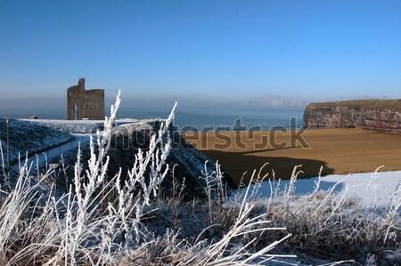 Szezonális kilátás kastély hó fedett óceán Stock fotó © morrbyte