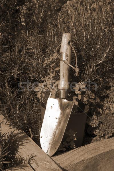 鋼 庭園 セピア ステンレス鋼 ハーブ園 アイルランド ストックフォト © morrbyte
