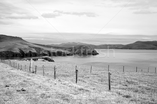 dingle peninsula farmland on the wild atlantic way Stock photo © morrbyte