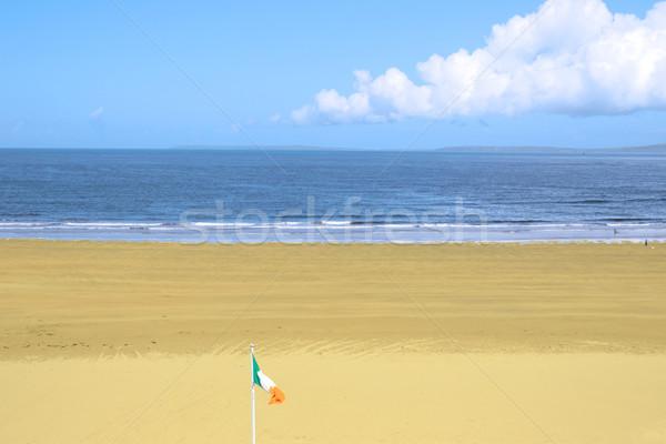 irish flag on the beach Stock photo © morrbyte