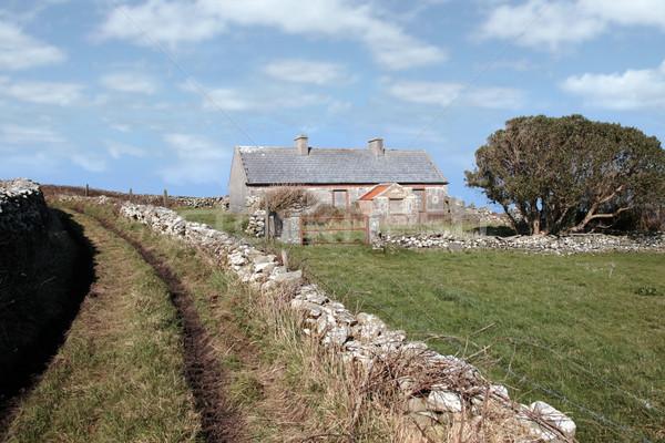 Stock photo: abandoned cottage