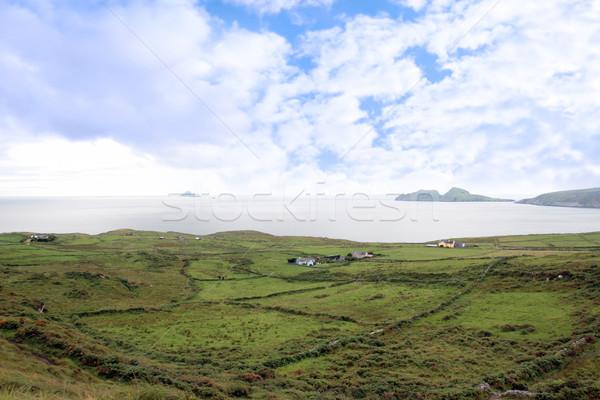 Zöld ír mezők kő kilátás festői Stock fotó © morrbyte
