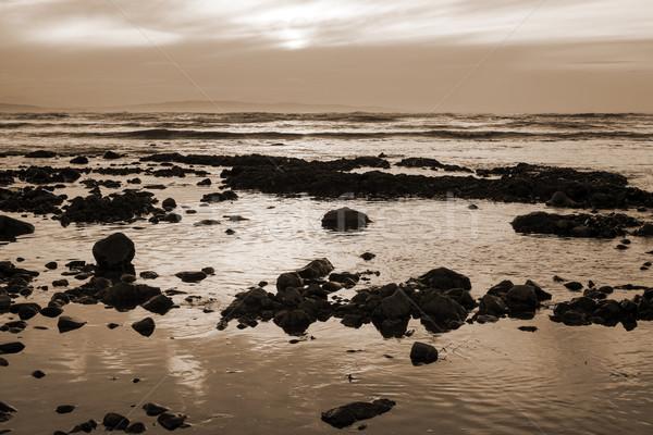 美しい セピア 日没 ビーチ ストックフォト © morrbyte