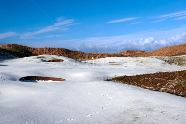 snowy covered links golf course with yellow flag Stock photo © morrbyte