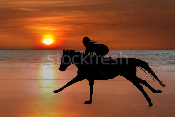 silhouette of a horse and rider galloping on beach Stock photo © morrbyte