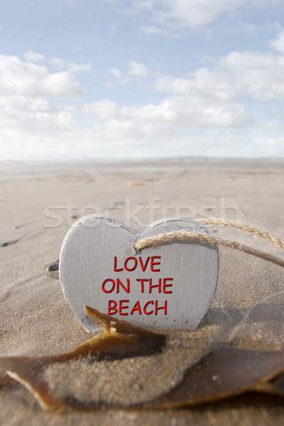 wooden love on the beach heart in the golden sand Stock photo © morrbyte