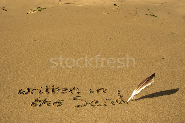 it's written in the sand Stock photo © morrbyte