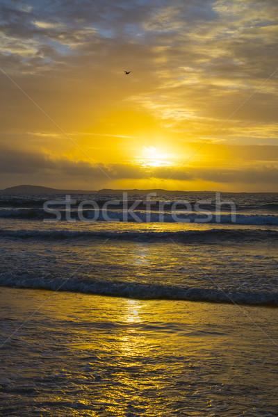 beautiful yellow sunset at beal beach Stock photo © morrbyte
