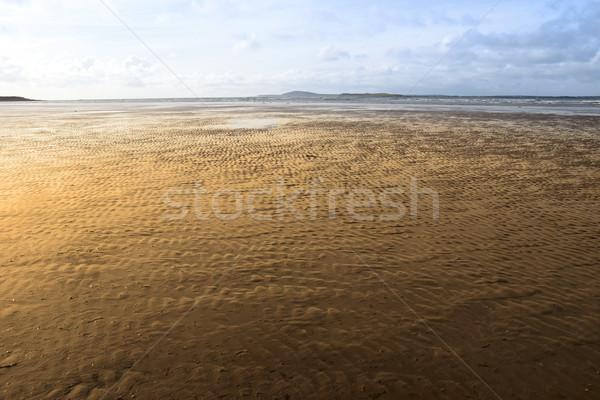 golden ripples of sand Stock photo © morrbyte