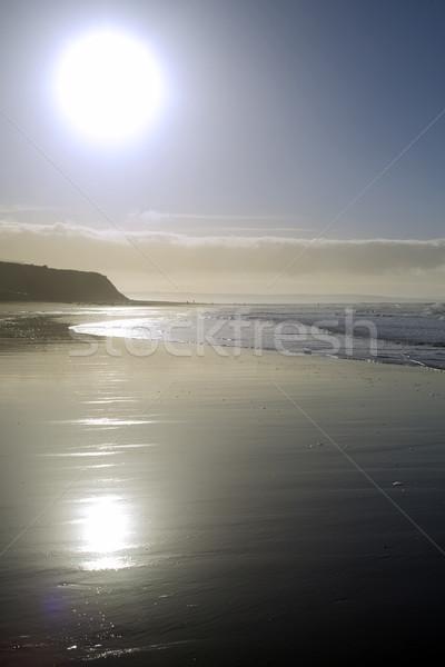 cliffs on a sunset beach Stock photo © morrbyte