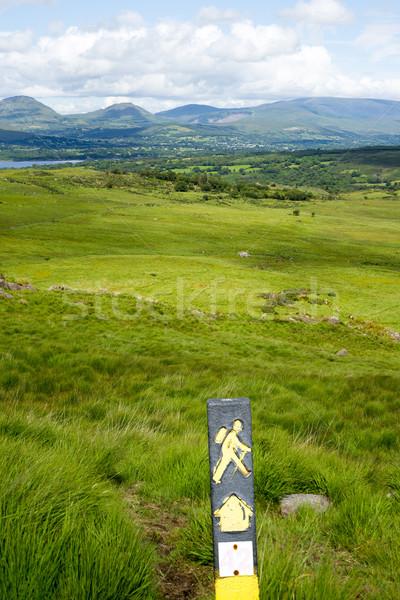 Hikers tabelasını dağ görmek yürüyüş yol Stok fotoğraf © morrbyte
