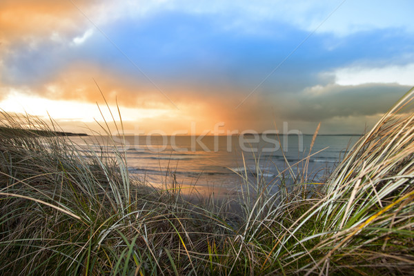 sundown view from the sand dunes of Beal Stock photo © morrbyte