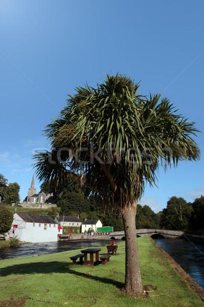 castletownroche river scene Stock photo © morrbyte