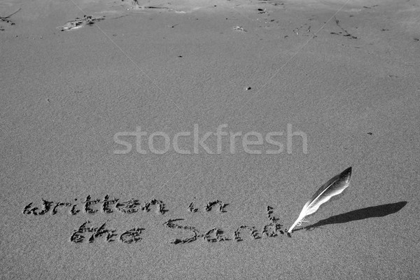 written in the sand with feather quill greyscale Stock photo © morrbyte