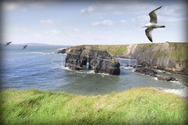 Szűz kő kilátás sziklák Írország part Stock fotó © morrbyte