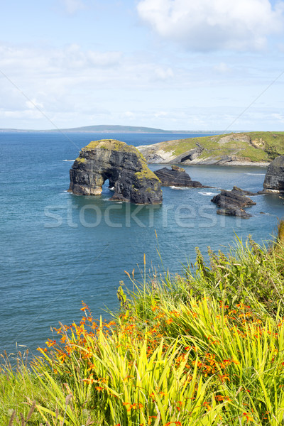 views of the virgin rocks with tall grass Stock photo © morrbyte