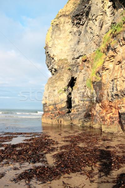 Szirt hínár kilátás tengerpart sziklák Írország Stock fotó © morrbyte