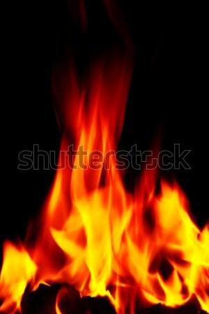 raging open fire flames Stock photo © morrbyte