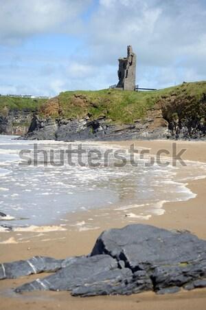 方法 城 犬 ビーチ アイルランド ストックフォト © morrbyte