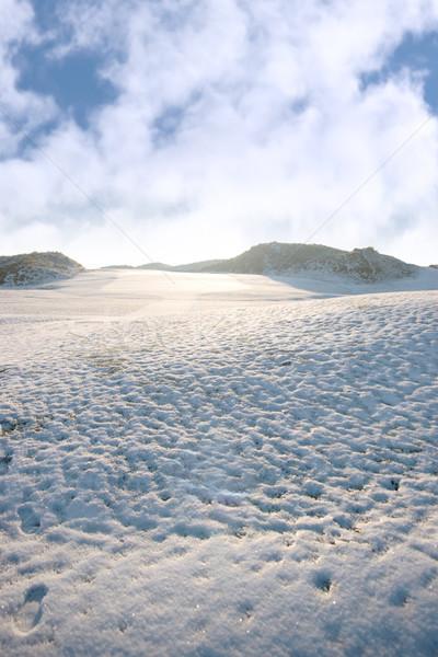 Voetafdrukken glad witte sneeuw gedekt links Stockfoto © morrbyte