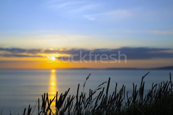 beautiful yellow sunset over loop head Stock photo © morrbyte