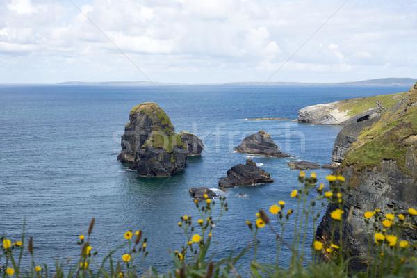 beautiful views over the coastal rocks Stock photo © morrbyte