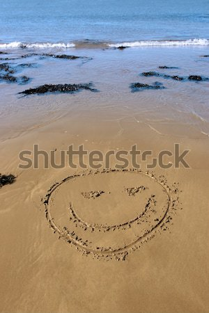 smiley face Stock photo © morrbyte