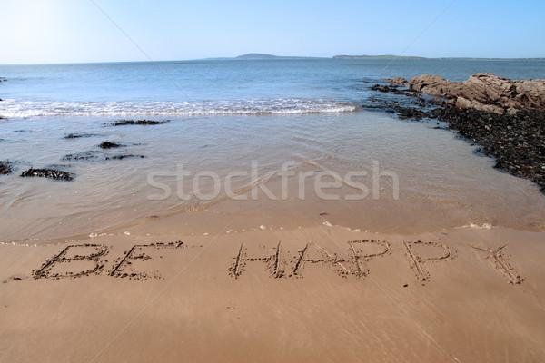 be happy Stock photo © morrbyte