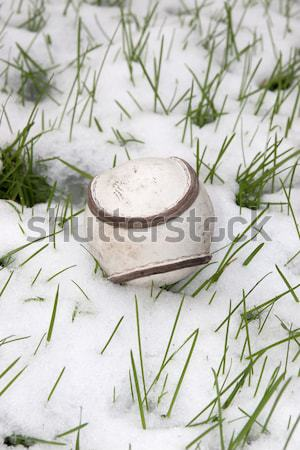 a size 5 sliotar Irish leather hurling ball Stock photo © morrbyte