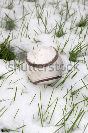 Méret ír bőr labda hó fedett Stock fotó © morrbyte