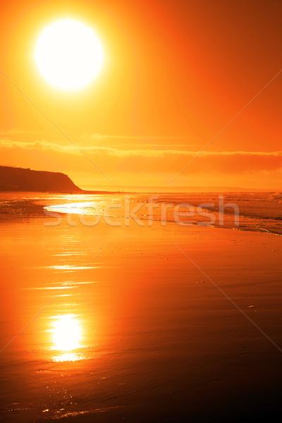 ビーチ 日没 自然 夏 ストックフォト © morrbyte