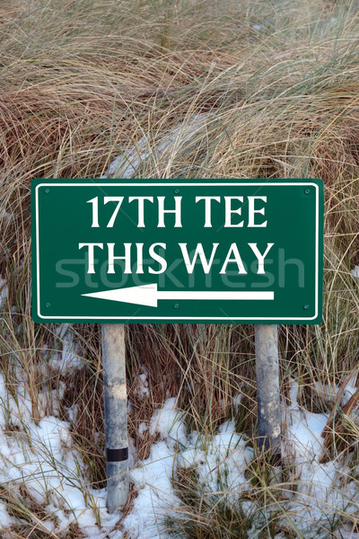 17th tee this way sign Stock photo © morrbyte