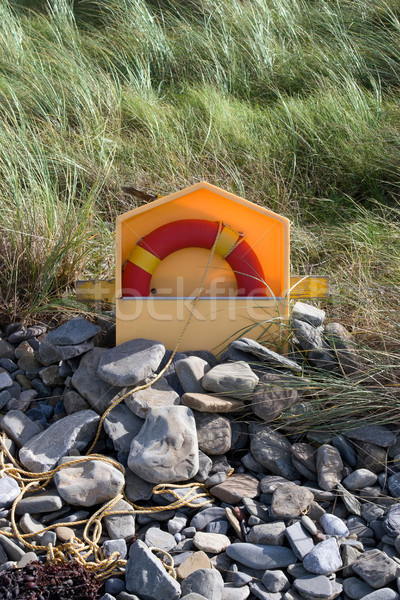 lifebuoy buried in the stones Stock photo © morrbyte