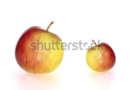 Grande piccolo succosa mele rosso giallo Foto d'archivio © morrbyte
