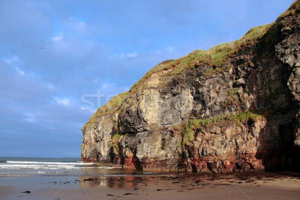 ballybunion beach cliff gulls Stock photo © morrbyte