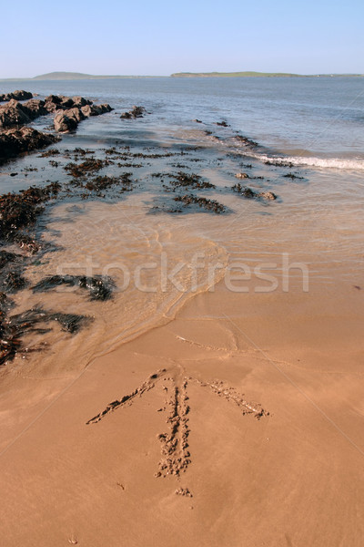 arrow in the sand Stock photo © morrbyte