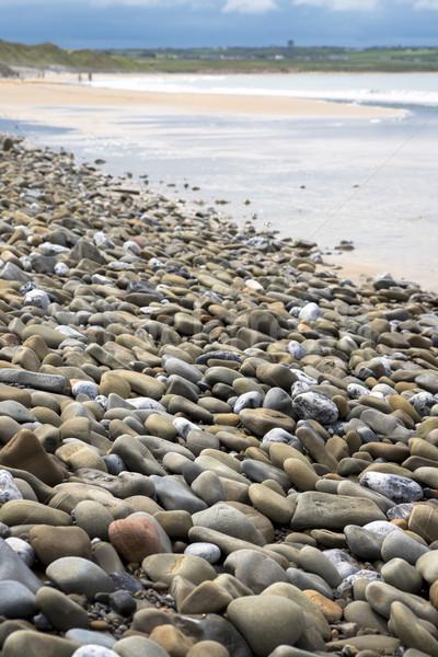 pebbled beach beside the links Stock photo © morrbyte