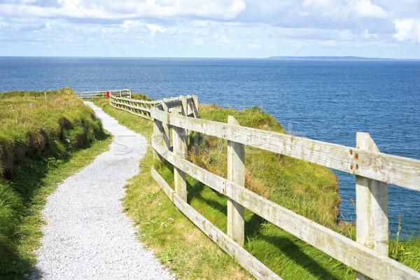 cliff walk on the wild atlantic way in ballybunion Stock photo © morrbyte