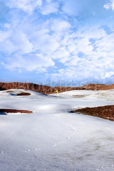 Nieve cubierto enlaces campo de golf amarillo bandera Foto stock © morrbyte