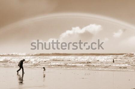 Egy férfi kutya tengerpart Írország szivárvány Stock fotó © morrbyte